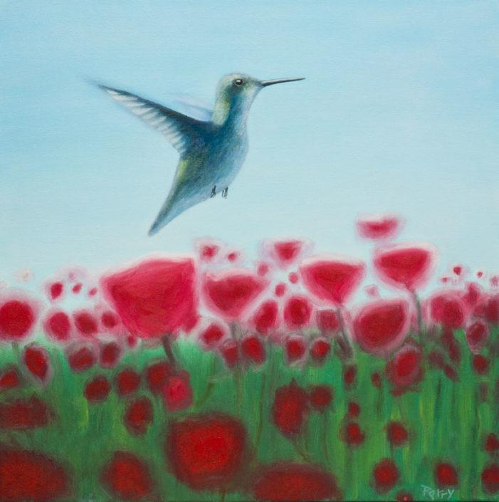 hummingbird, poppies