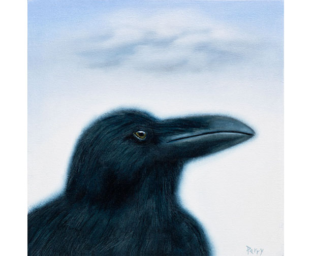 raven, stephen perry