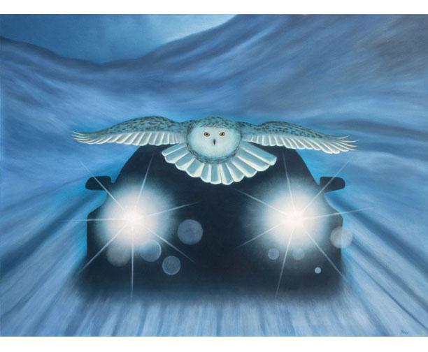 owl car snow ,stephen perry artist