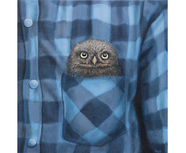stephen perry artist, owl