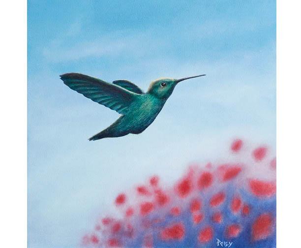 stephen perry artist, hummingbird, poppies