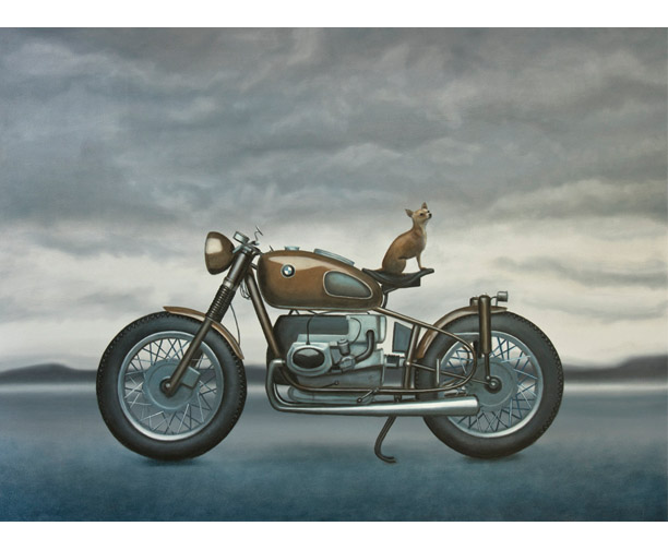 stephen perry bmw chihuahua motorcycle